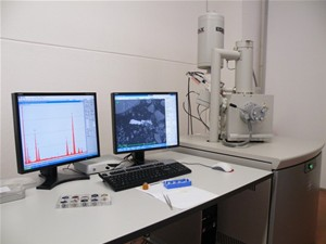 SCANNING ELECTRONIC MICROSCOPE